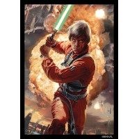 Protector de Cartas Star Wars: Luke Skywalker