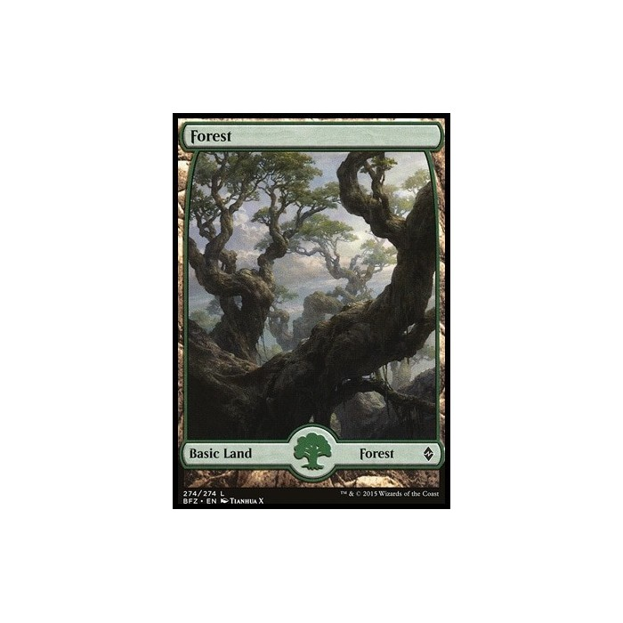 Tierra Básica Forest - Full Art